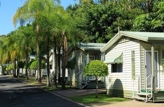 แอชมอร์ ปาล์มส์ ฮอลิเดย์ วิลเลจ: Ashmore Palms Palm Cottage