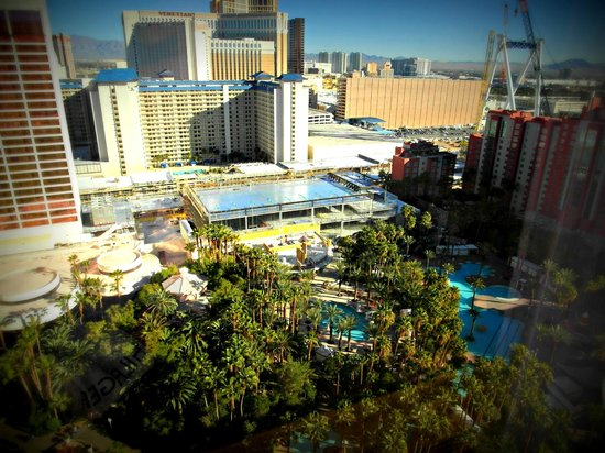 Flamingo Las Vegas Hotel & Casino:                                     Garden/pool view