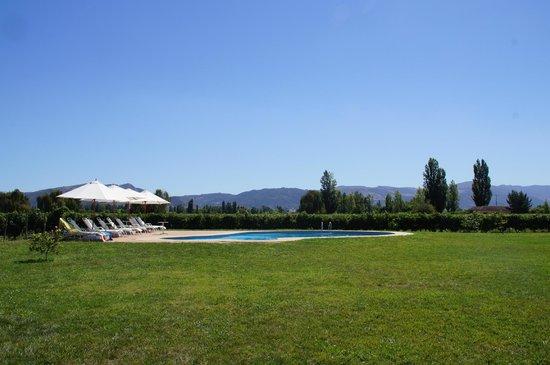 Hotel TerraVina:                   プール