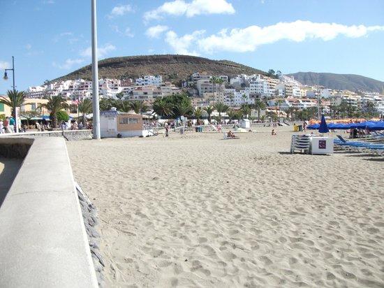 Torres Del Sol Apartments:                   Vista beach