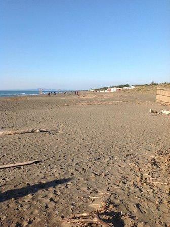 Tombolo Talasso Resort:                   Spiaggia fronte hotel