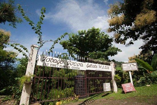 Tobago Cocoa Estate W.I. Ltd: Tobago Cocoa Estate, Tobago W.I.