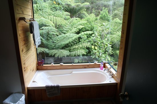 Buffalo Lodge :                   A bathroom with a view
