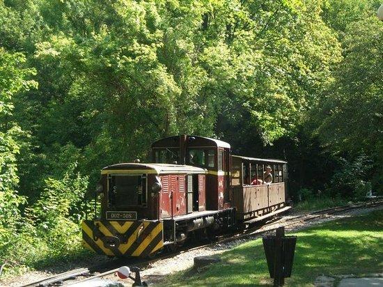 State Forest Railways of Lillafured:                   Narrow Gauge train