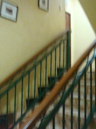 Ildefesa Suites Inn :                                     stairs
