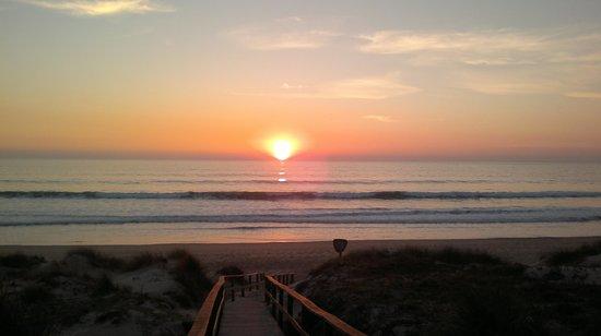 Melia Sancti Petri:                   puesta de sol