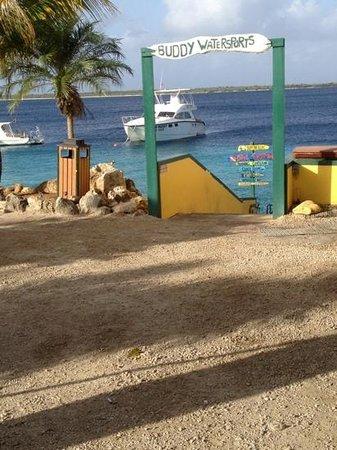 Buddy Dive Resort:                   Buddy Dive