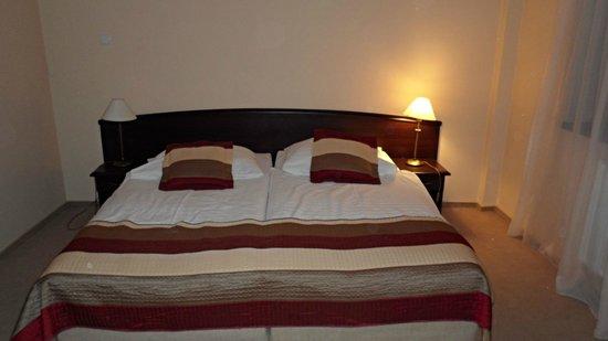 Hotel Anek:                   sypialnia