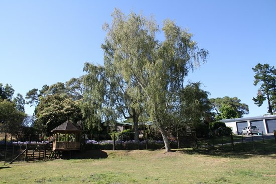 Mokoia Downs Estate B&B :                   So much space