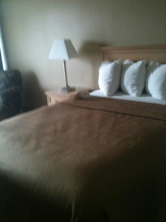 New Orleans Expressway Hotel and Suites:                   comfortable bed