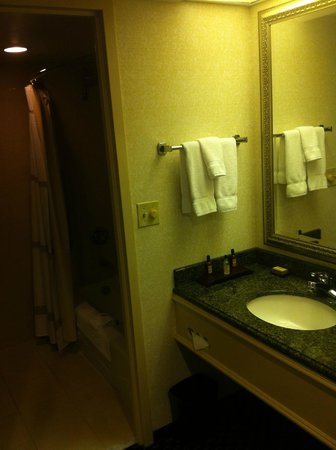 Detroit Marriott Troy:                   Bathroom