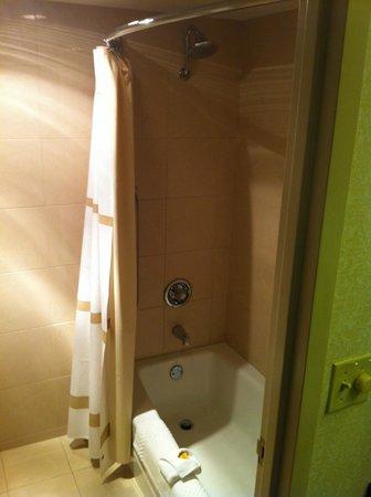 Detroit Marriott Troy :                   Bathroom