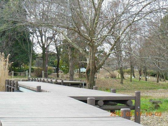 Kaname Shinsui Park
