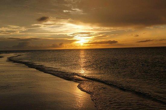คุรีดุ ไอแลนด์ รีสอร์ท แอนด์ สปา:                   Sur la langue de sable