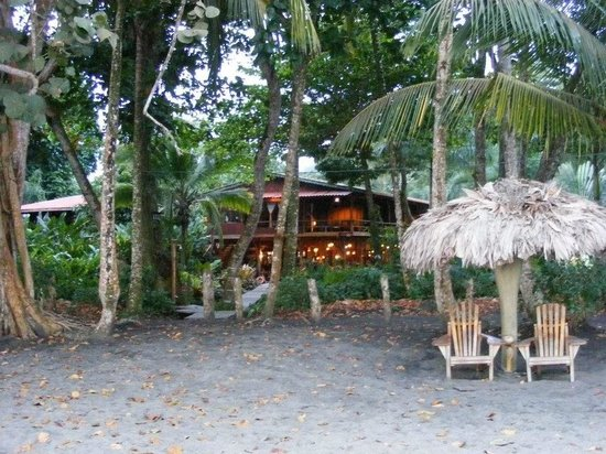 Hotel Banana Azul:                   Banana Azul from the beach.