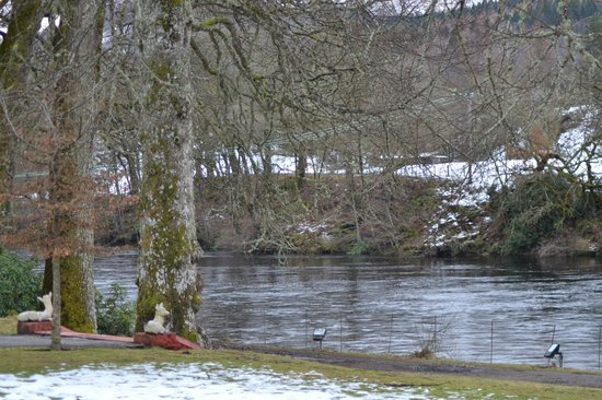 Dunkeld House Hotel:                   The river Tay from hotel grounds
