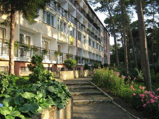 Bocianie Gniazdo Hotel:                   Hotel von der Straßenseite