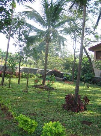 Ferreira Resort:                   park