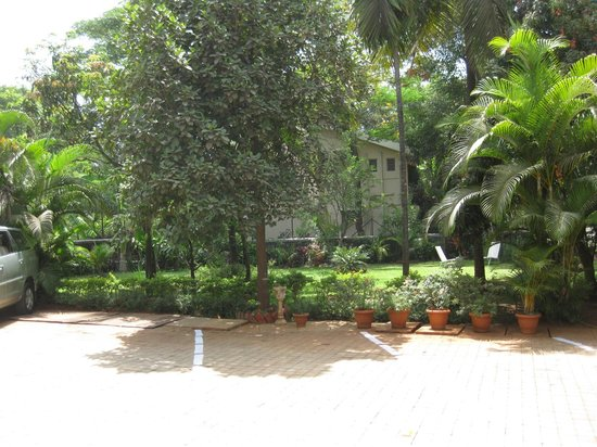 Ferreira Resort:                   lawn