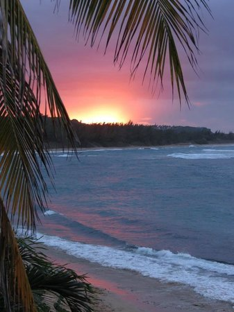 Villa Tropical Oceanfront Apartments on Shacks Beach: Compliments to Dr. Michael Shand on another fabulous sunset shot from Villa Filisha