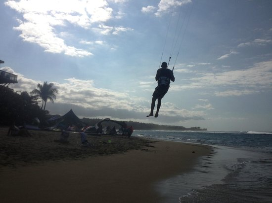 Villa Tropical Oceanfront Apartments on Shacks Beach: Kite boarder testing the wind