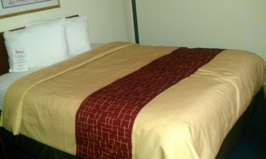 Red Roof Inn & Suites Dover :                   new bedding