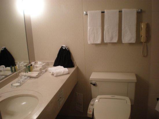 Hilton Osaka:                   バスルーム