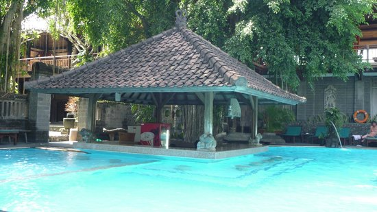 โรงแรมปูริ แบมบู:                   Piscine