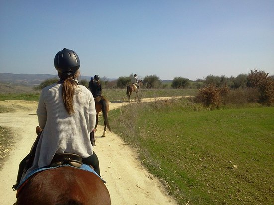 Horseback riding in Tuscany Wine Tasting :                   Riding with the rest of the group we met on the minivan.