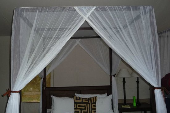 Fairmont Mara Safari Club:                                     Safe under the net