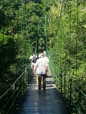 La Selva Biological Station:                   Bridge across Rio de Sarapiqui