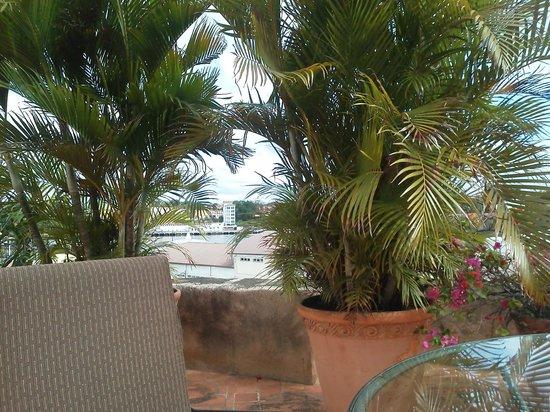 Hodelpa Nicolas de Ovando:                   view from pool...