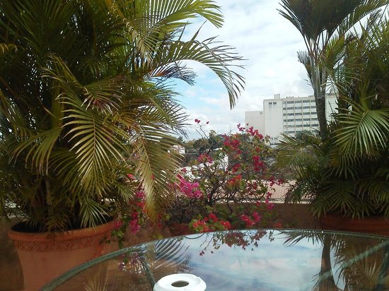 Hodelpa Nicolas de Ovando:                   View from pool area...
