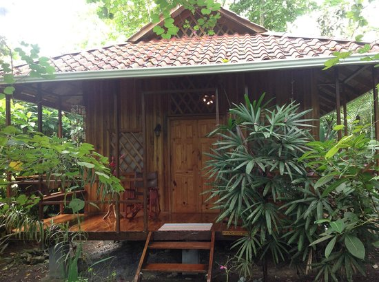 Coral Hill Bungalows:                                     Outside our Bungalo