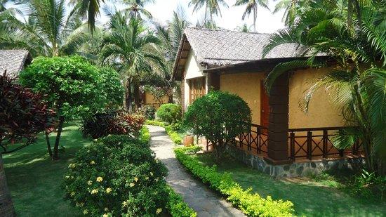 Little Mui Ne Cottages:                   Бунгало