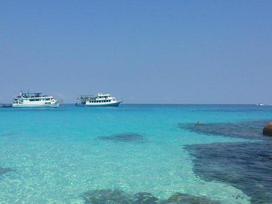 Similan Islands National Park:                   Similan