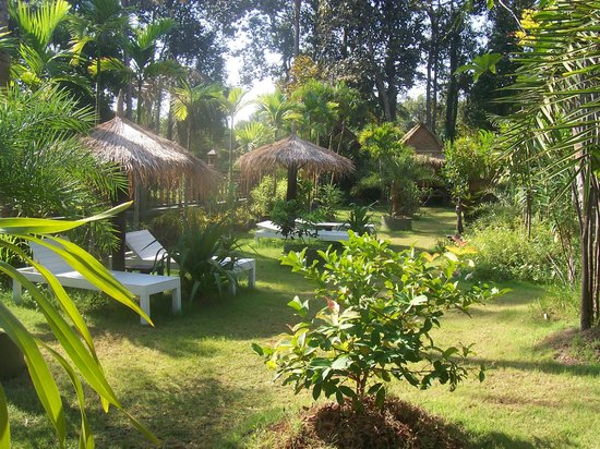 Baan Habeebee Resort:                   The tranquil gardens