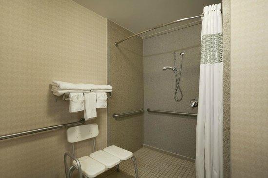 Hampton Inn Orlando International Drive/Convention Center: Guest Bathroom Accessible