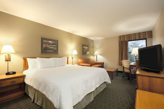 Hampton Inn Orlando International Drive/Convention Center: King Guest Room with Sofabed