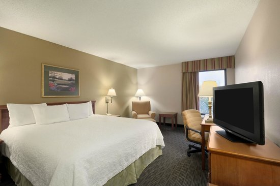 Hampton Inn Orlando International Drive/Convention Center: King Guest Room