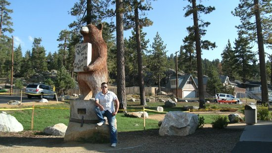 cabin big cabins bears in vacation rentals picture lodging lake bear ca