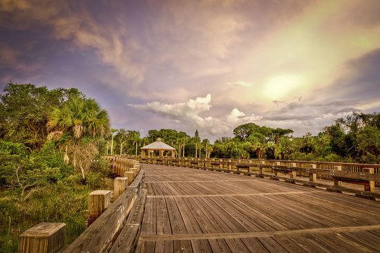 Conservancy Of Southwest Florida Naples 2019 All You