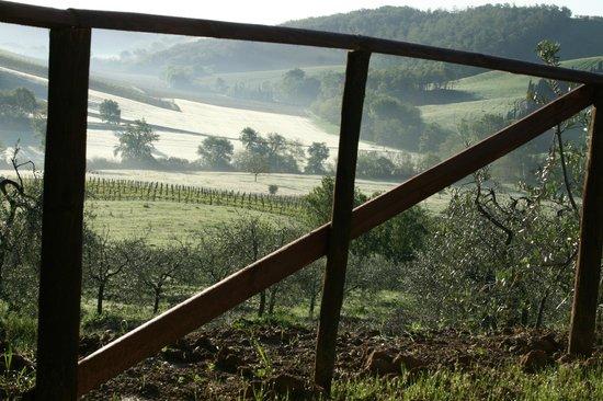 fattoria voltrona