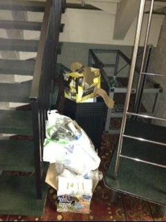 Quality Inn:                   Trash in stairways