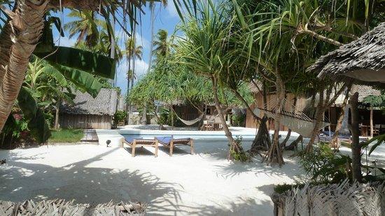 Matemwe Bandas Boutique Hotel, Zanzibar:                   la piscine et les hamacs