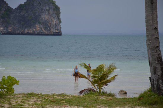 Koh Ngai Thanya Beach Resort:                   Udsigt
