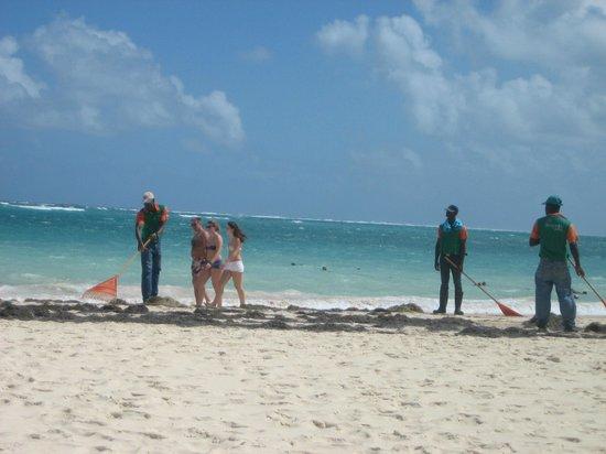 Secrets Royal Beach Punta Cana:                   Cleaning the beach