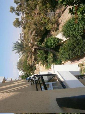 Venus Beach Hotel:                   utsikt från mitt hotellrum