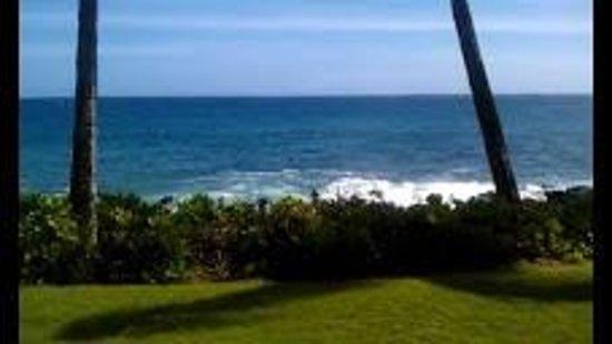 Poipu Shores Resort:                                     Waves crashin on the rocks below