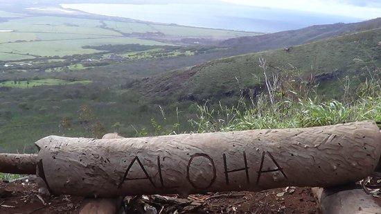 Flyin Hawaiian Zipline :                   Aloha point